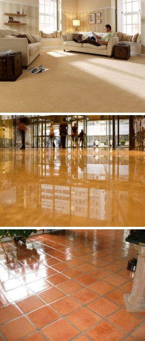 Central Coast Carpet Cleaning